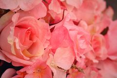 Rose artificial flowers Stock Images