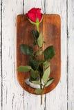 Rose auf den Brettern Stockfotografie