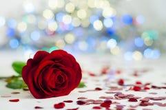 Rose auf der weißen Tischdecke zwischen Herzen Stockbilder