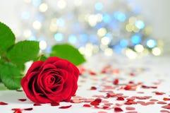 Rose auf der weißen Tischdecke zwischen Herzen, bunte Lichter im Hintergrund lizenzfreies stockfoto