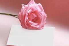 Rose auf einer Liebesanmerkung Stockfoto