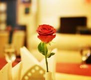 Rose auf einer Restaurant-Tabelle lizenzfreies stockfoto
