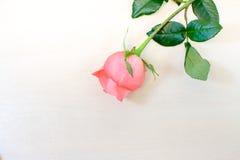 Rose auf hölzernem Hintergrund Stockbild