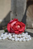 Rose auf Perlen lizenzfreies stockfoto