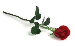 Rose auf Weiß Lizenzfreies Stockfoto