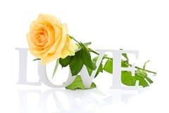 Rose avec AMOUR Word d'isolement sur le fond blanc Photos libres de droits