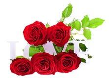 Rose avec AMOUR Word d'isolement sur le fond blanc Photos stock