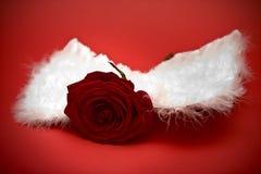 Rose avec des ailes Photo libre de droits