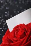 Rose avec la carte de voeux Photos libres de droits