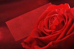 Rose avec la carte de voeux Image libre de droits