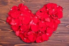 Rose avec les pétales rouges avec des coeurs pour la Saint-Valentin sur le verrat Image stock