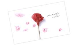 Rose avec plusieurs baisers de rouge à lievres Image libre de droits