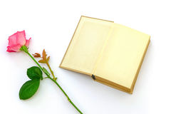 Rose avec un livre Images stock