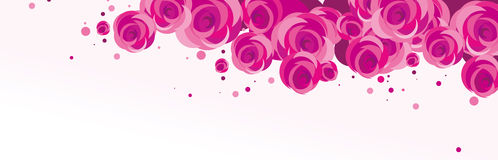 Rose Background Royalty Free Stock Images