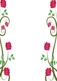 Rose background. Floral background with red roses Stock Photo