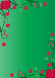 Rose background. Green floral background with red roses Stock Photos
