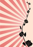 Rose background. Simple pink background with red roses Stock Photography