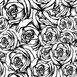Rose_background 库存例证