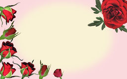 Rose background. Beautiful roses frame a space for you message Stock Photo