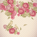 Rose Background with Birds and Butterflies Royalty Free Stock Photography