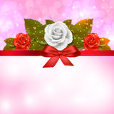 Rose background Royalty Free Stock Photography