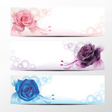 Rose banner collection 2. Rose banner collection, set 2 Royalty Free Stock Images