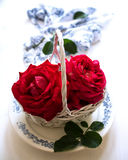 Rose basket Stock Images