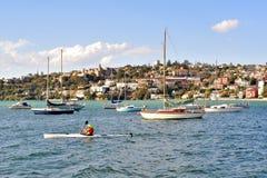 Rose Bay Fotografie Stock