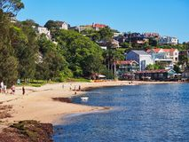 Rose Bay Beach, Sydney, NSW, Australia. People relaxing on the yellow sand beach at Rose Bay, Sydney Harbour, NSW, Australia, with a white dog paddling in the royalty free stock image