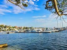 Rose Bay Marina, Sydney Harbour, Australië stock afbeelding