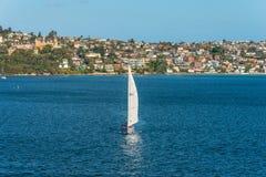 Rose Bay sailing boat, Sydney, Australia Royalty Free Stock Photos