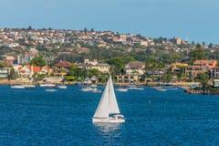 Rose Bay sailing boats, Sydney, Australia Royalty Free Stock Photography