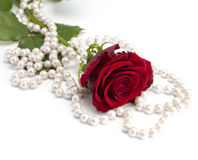 Rose with a beads. On the isolated white background Royalty Free Stock Images