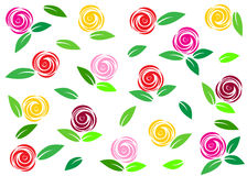 Rose. Stock Images
