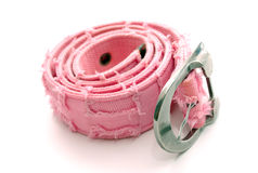 Rose belt Stock Image