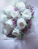Rose bianche Fotografia Stock