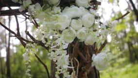 Rose bianche adorabili del cespuglio Fiori bianchi ornamentali sul sole luminoso Rose tenere in giardino Belle rose con verde Fotografia Stock Libera da Diritti