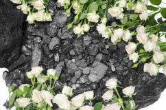 Rose bianche del fondo di pietra del carbone Fotografie Stock Libere da Diritti