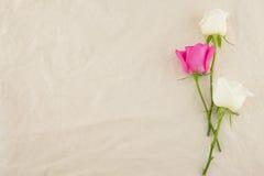 Rose bianche e dentellare Fotografia Stock