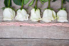 Rose bianche situate in conformità con le perle di corallo su fondo di legno immagini stock