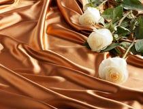 Rose bianche su un raso dorato. Schede di festa Fotografia Stock