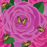 Rose big seamless pattern. Illustration rose pink purple color big seamless pattern butterflies background texture wallpaper graphic element Royalty Free Stock Photo