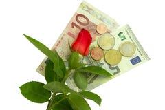 Rose, billets de banque et pièces de monnaie Photographie stock libre de droits