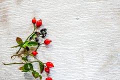 rose biodra Obrazy Stock