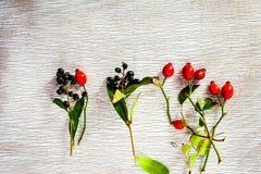rose biodra Zdjęcie Royalty Free