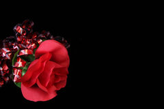 Rose on Black. Red rose and red sparkle ribbon on black background. Copy space royalty free stock photo