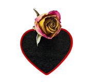 Rose and black heart Stock Image