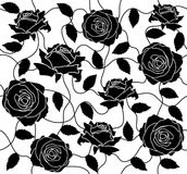 Rose black seamless Stock Photography