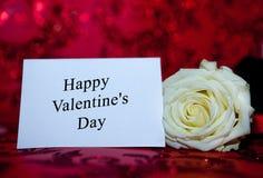 Rose blanche avec un trou au jour de la valentine sainte sur un fond rouge photo libre de droits