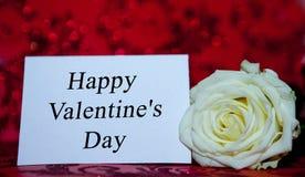 Rose blanche avec un trou au jour de la valentine sainte sur un fond rouge image libre de droits